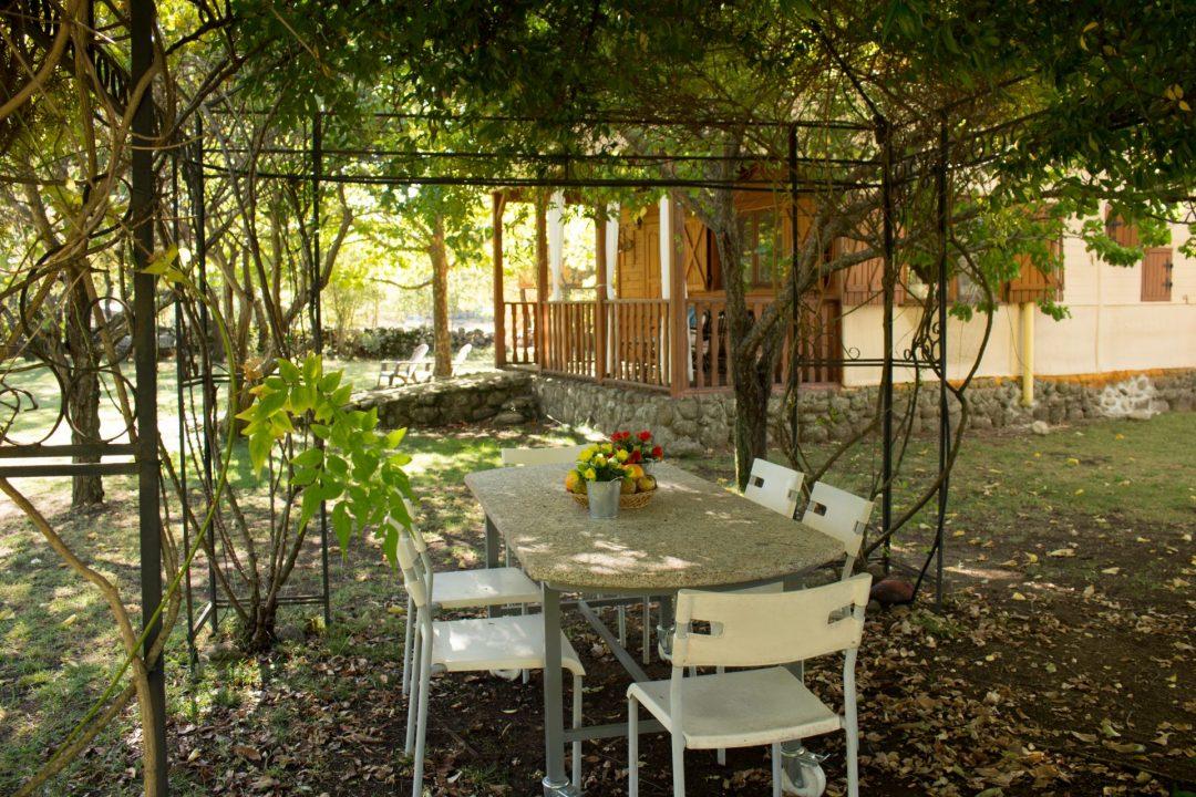 Mesa en el jardín bajo la pérgola